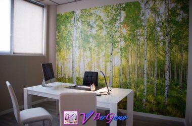 decorazioniCOLORARTdiLeoniPaoloColognoalSerio1513265344