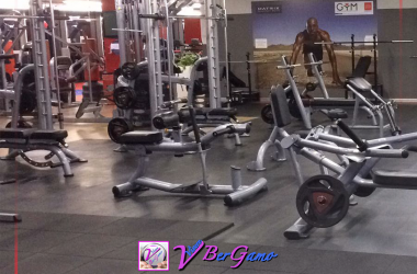 Palestra The gym game Albino