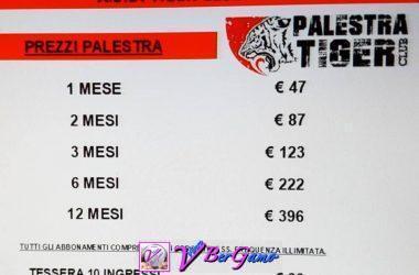 Palestra Tiger - Clusone Bg