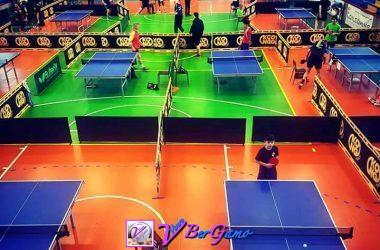 Ping Pong - Cisano Bergamasco